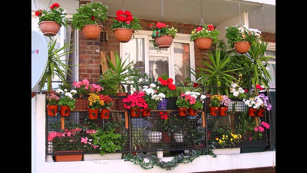 balcony-flowers-ideas-images-1